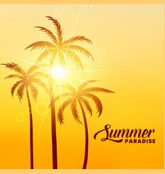 summer paradise holidays background with sunshine vector image