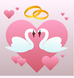 White swans and wedding rings and hearts vector