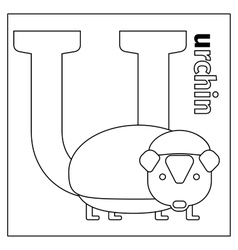 Urchin letter U coloring page vector image vector image