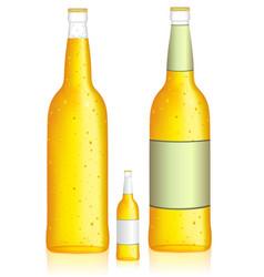 bottle beer low alcohol beverage vector image