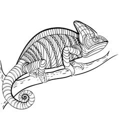 Coloring book Coloring for adult vector