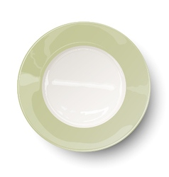 Empty light olive green plate with reflections vector