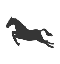 horse ride animal vector image