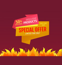 limited time only one day special offer discount vector image