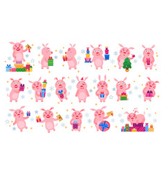 set of christmas pigs with christmas gifts vector image