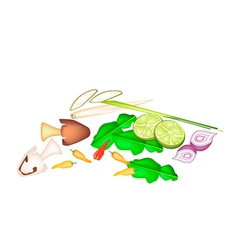 Stack tom yum ingredient on white background vector