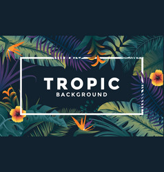 tropical background with frame 4 vector image