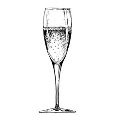 Champagne glass vector