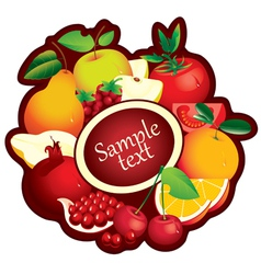 fruits range vector image vector image