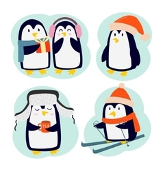 Penguin set characters vector image