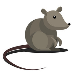 cartoon simple gray mouse with a long tail vector image