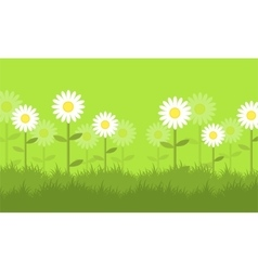 Flower at spring backgrounds vector