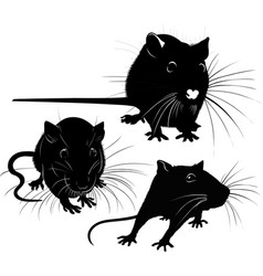 rat silhouette collection isolated on white vector image