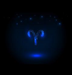 Zodiac sign on the starry sky vector