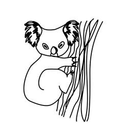 Koala cartoon drawing vector