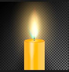 realistic burning dinner candle transparency grid vector image vector image