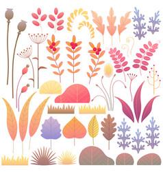 flat autumn floral elements set vector image