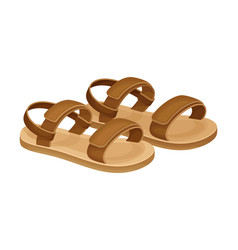 Men summer brown leathery sandals for bare foot vector