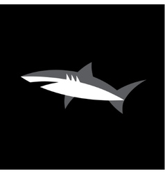 White Shark on a dark background Animal logo vector image