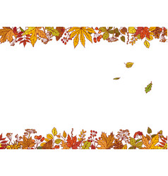 colourful outline background sketch autumn vector image vector image