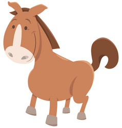 Horse or pony cartoon animal vector
