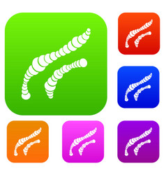 spiral bacteria set collection vector image vector image