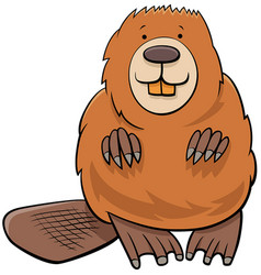 beaver animal character cartoon vector image