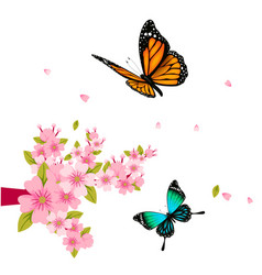 Butterfly and pink flower white background vector