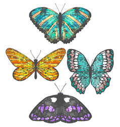 Colorful set of hand-drawn butterflies vector