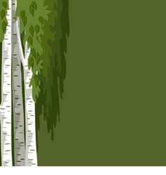 Green background with birches vector