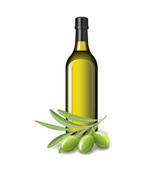 Olive oil bottle and olives isolated vector image vector image