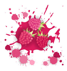 Raspberry fruit logo watercolor splash design vector
