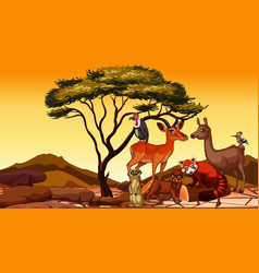 scene with african animals in field vector image