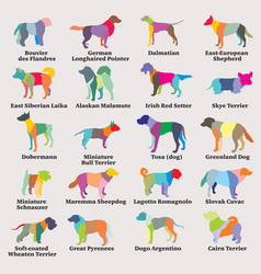 set of colorful mosaic dogs silhouettes-8 vector image
