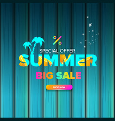 summer sale modern color design template web vector image