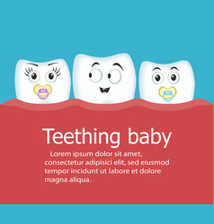 teething baby banner with teeth vector image