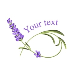 Your text template vector image