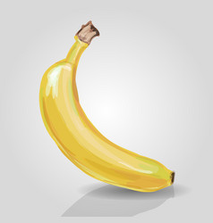 banana fruit food healthy health vector image