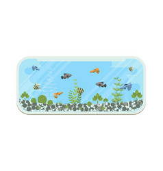 cartoon home aquarium with vector image