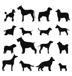 Dog breed black silhouette vector