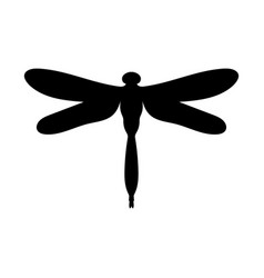 dragonfly insect black silhouette animal vector image