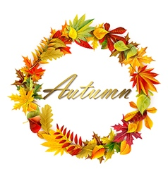 Fall garland vector