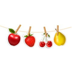 Fruit stickers hanging on a rope vector
