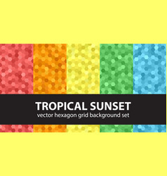 Hexagon pattern set tropical sunset seamless vector