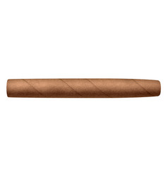 Realistic cigar isolated on white vector