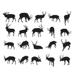 Set of deer silhouettes-2 vector