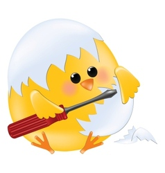 Chick holding screwdriver vector image