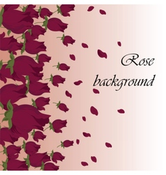 Pink Roses petals background vector image