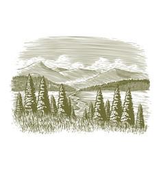 woodcut vintage wilderness vector image vector image