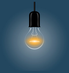 a realistic electric light bulb hanging from the vector image